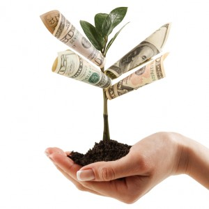Marietta Tree Value
